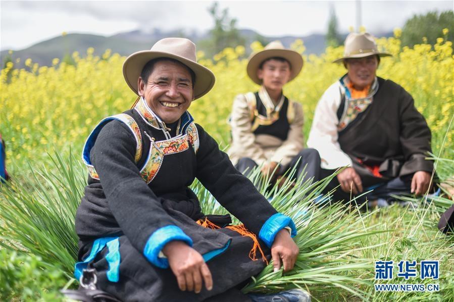 (新华全媒头条·图文互动)(5)阔步走在新时代康庄大道上——以习近平同志为核心的党中央关心西藏工作纪实